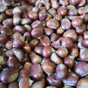 castagne-bio-Abruzzo