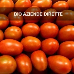 pomodori-da-sugo